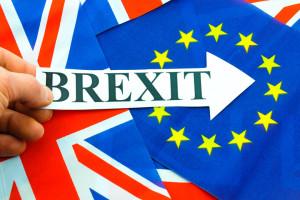 brexit hand-holding-brexit-sign-eu-referendum